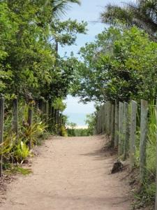 """Tirei essa foto pensando na ideia de querer chegar ao """"paraiso"""". As duas cercas laterais parecem aumentar o caminho e no fundo vemos o """"paraiso"""". Acho que a quantidade de tons de verde caem bem com o azul do céu e do mar. E acho que fica legal o caminho ser de areia e no """"pairaso"""" também ter areia."""